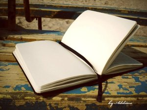 empty_pages_in_my_diary_by_adeliina